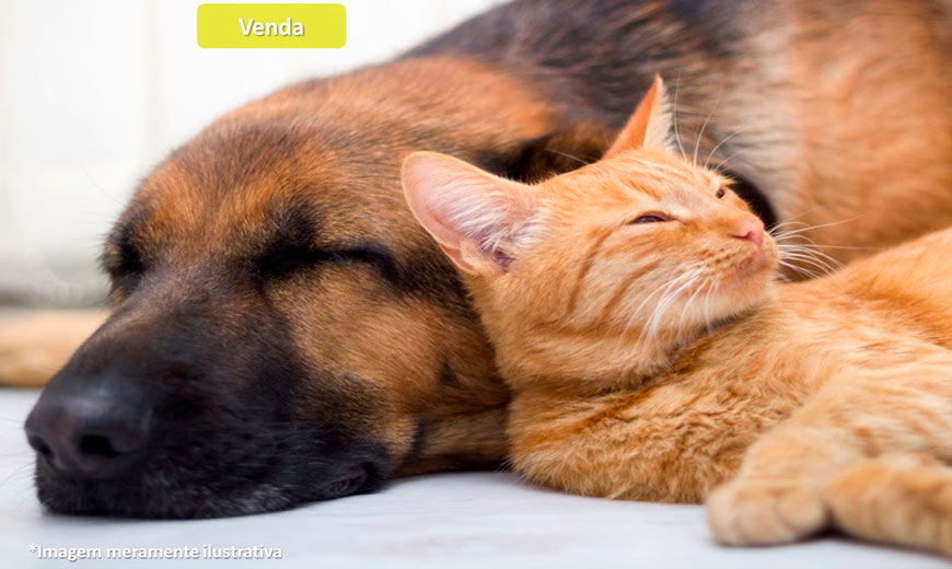 Pet Shop e Clínica Veterinária